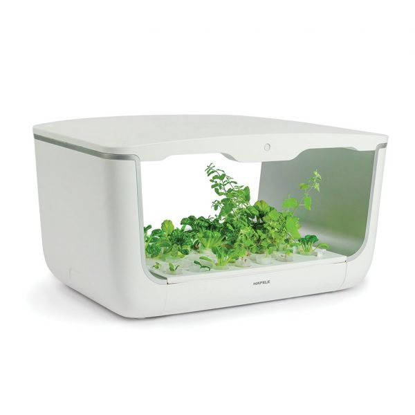 hộp trông cây easy grow home box