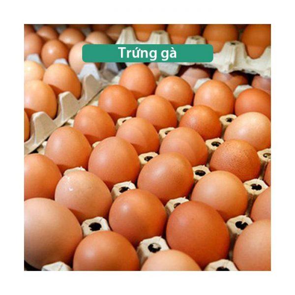 Trứng gà công nghiệp sạch